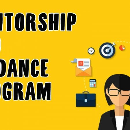Mentorship and Guidance Program